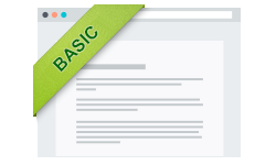 Basic Website Package Icon